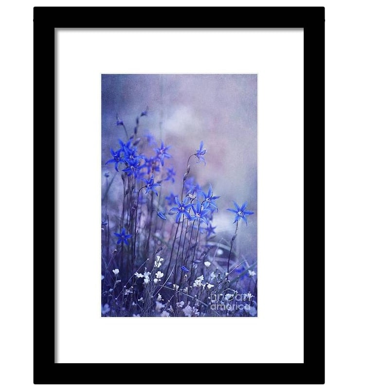 Bluebell Flower Framed Art Print