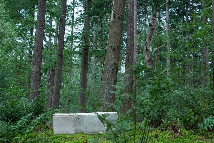 Environmentally Friendly Coffin