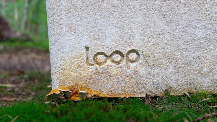 Loop Biodegradable Coffin