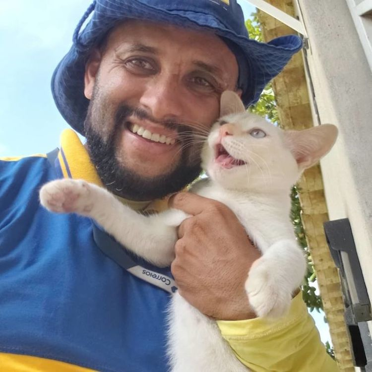 Mailman Befriends Animals Carteiro Amigo dos Animais