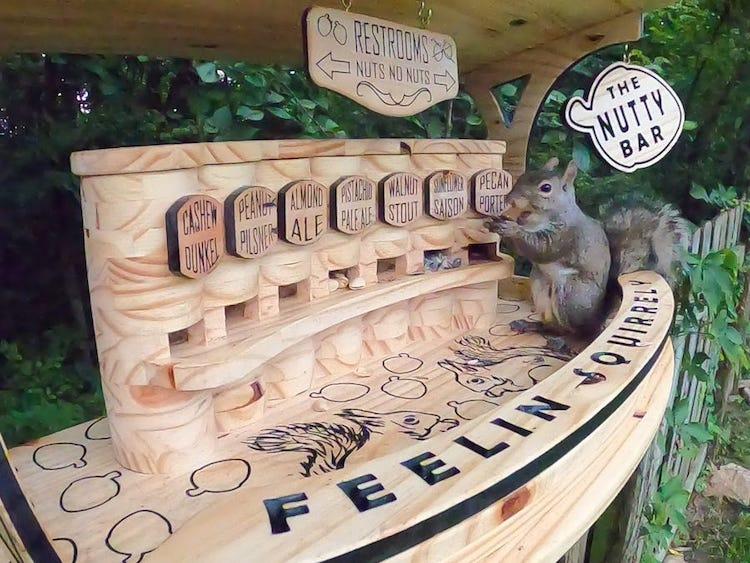 bar para ardillas de madera