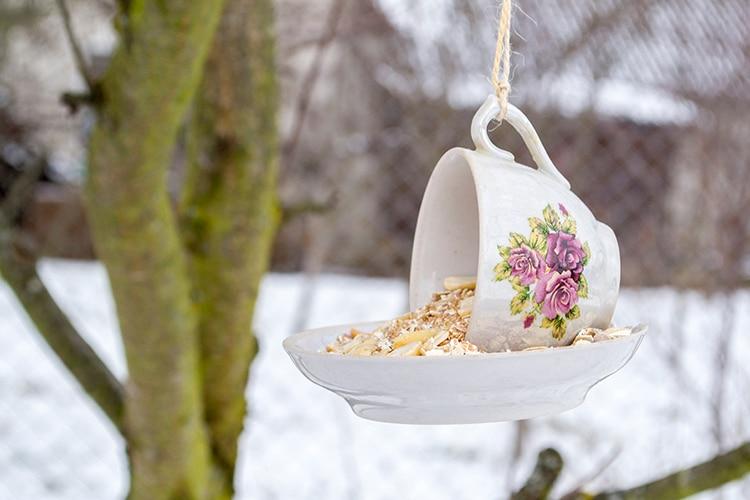Teacup Bird Feeder DIY Craft