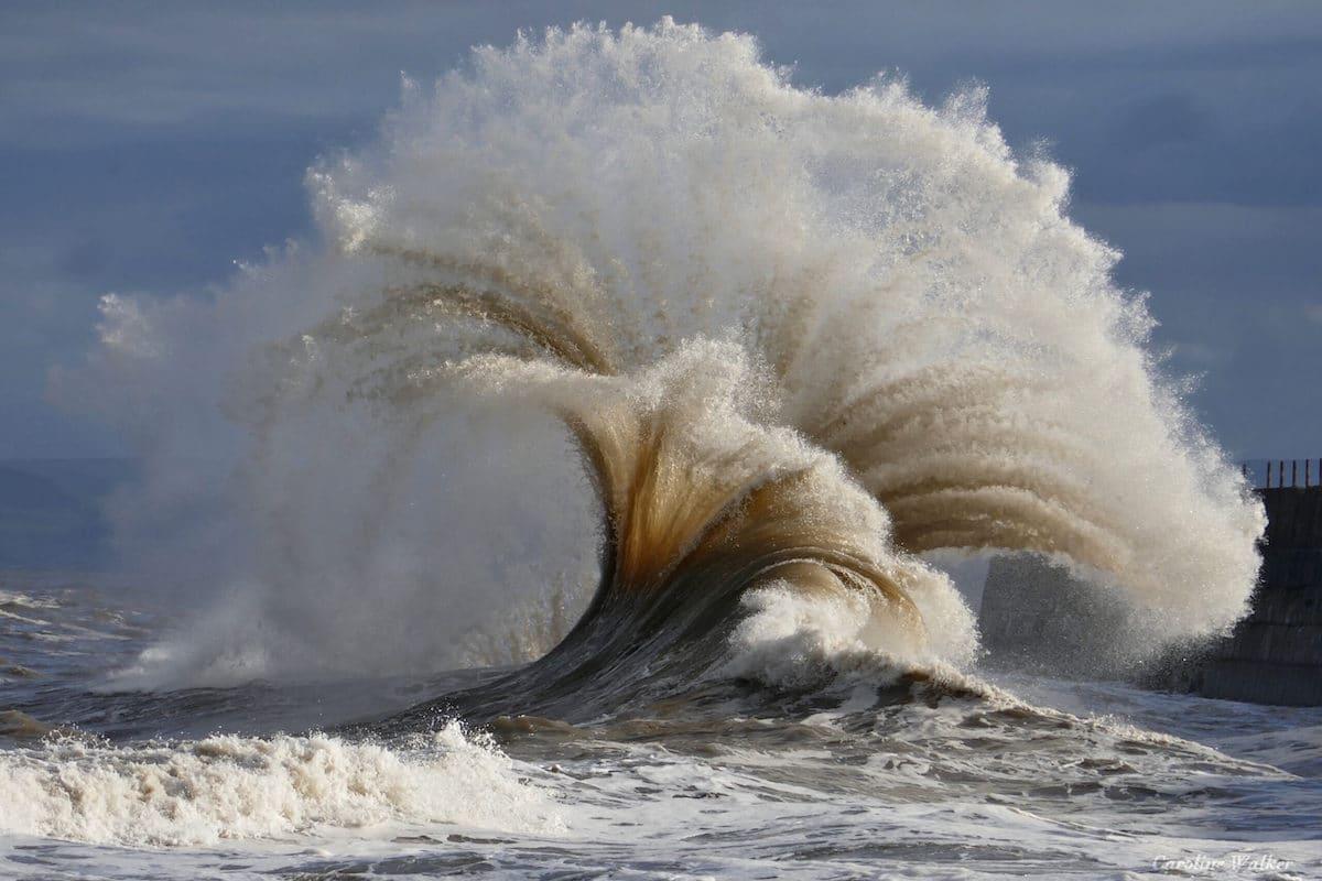 gran ola en Durham