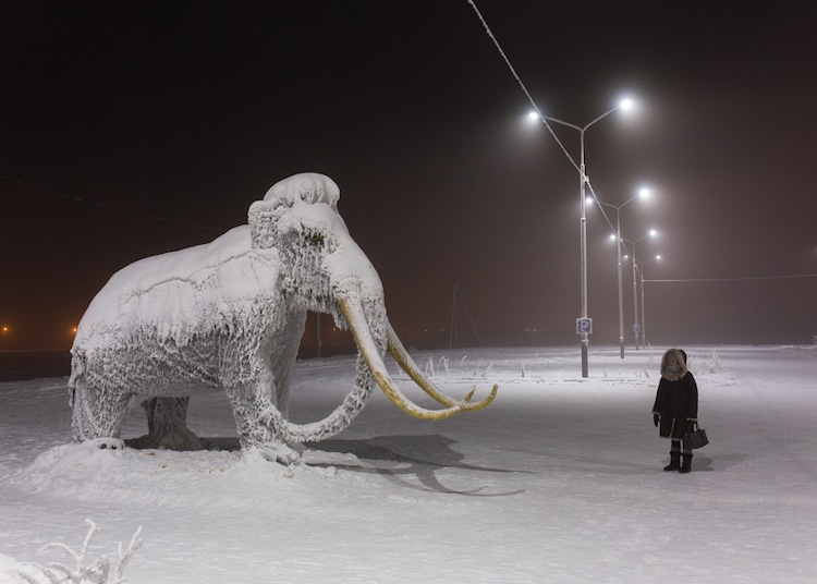 Woman Standing Next to a Stuffed Mammoth in Russia