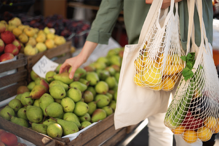 Reusable Bags Will Replace Single-Use Plastic Bags