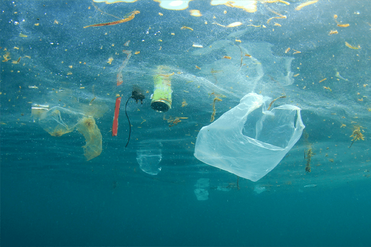 Single Use Plastic Garbage in Ocean