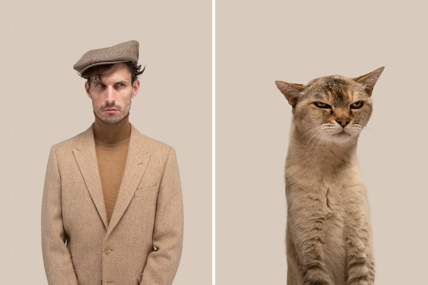 People and Cat Look Alikes