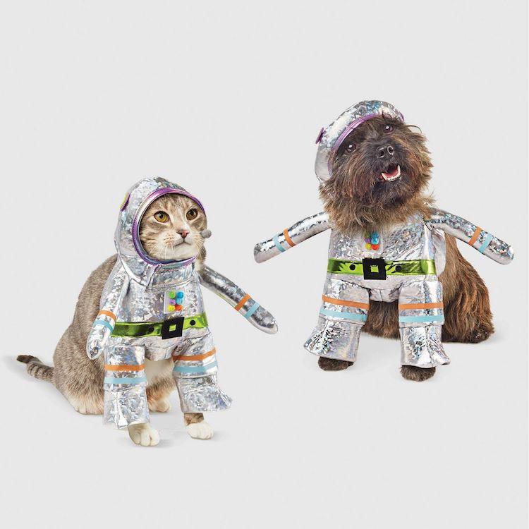 Disfraz de robot para mascotas