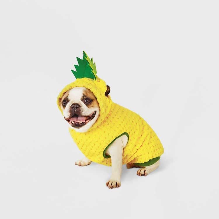 Disfraz de piña para perro