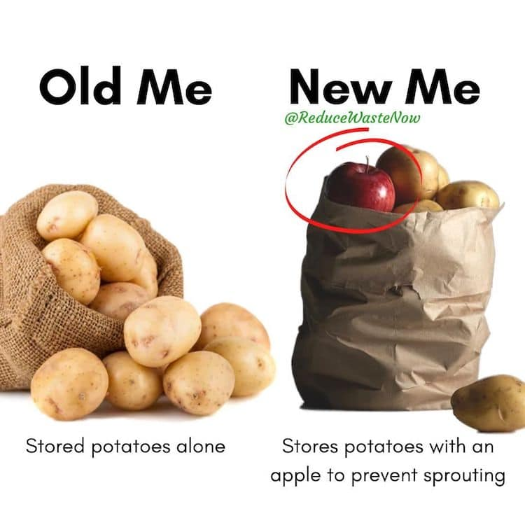 How to Keep Potatoes From Now Sprouting