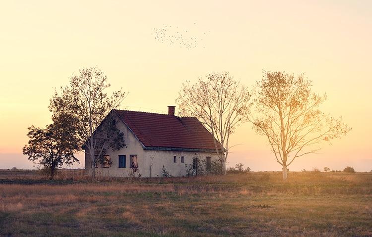 Farmhouse In Field Rustic