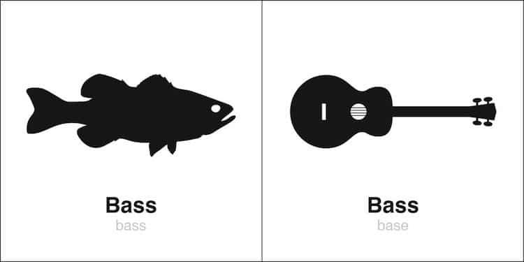 'Bass' Homographe