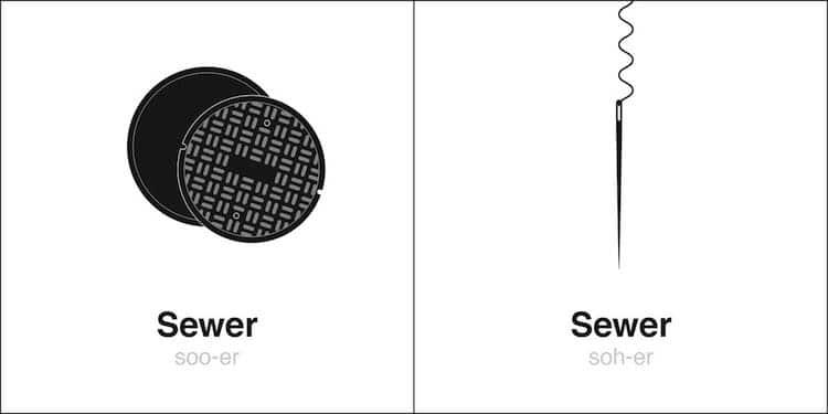 Illustration 'Sewer' Homographes