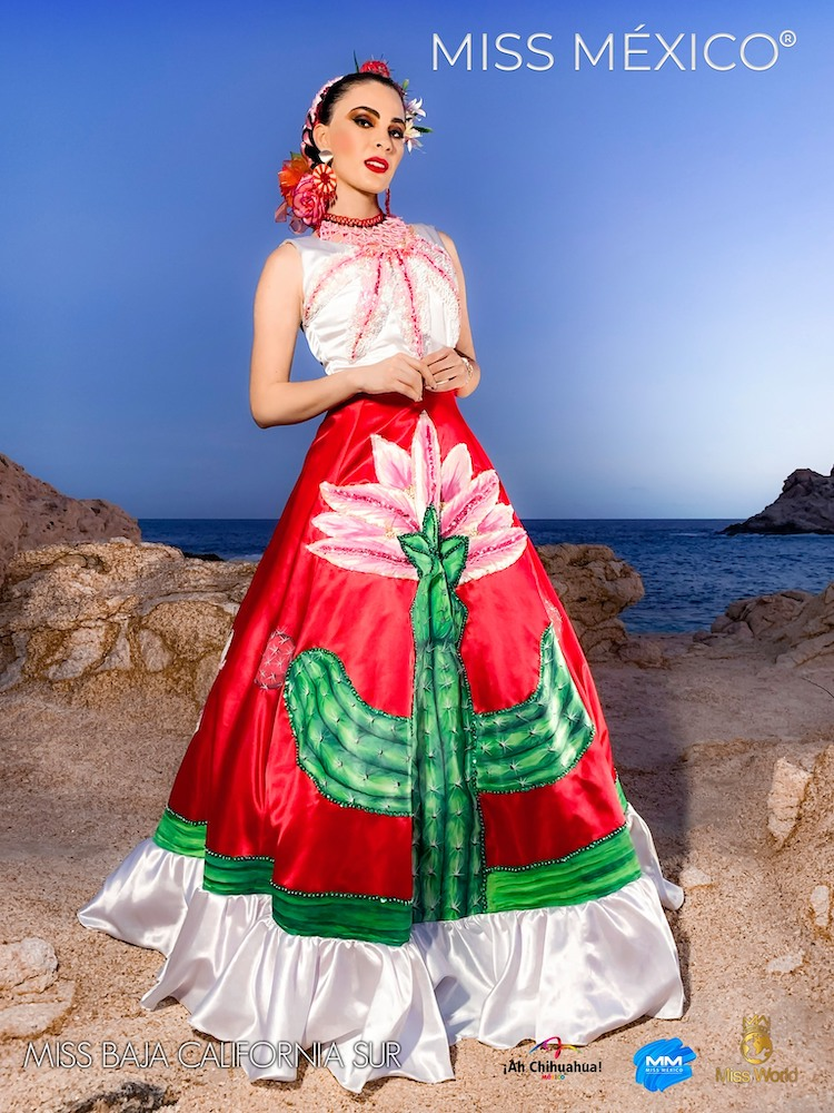 Miss Mexico Competition 2020