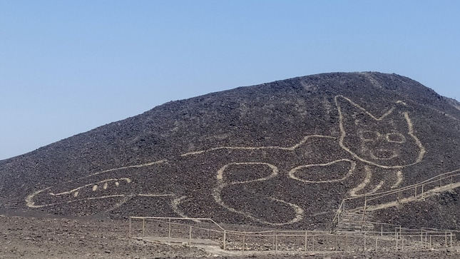 Cat Geoglyph at Nazca Lines