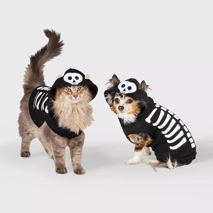 Disfraces de esqueleto para perros y gatos
