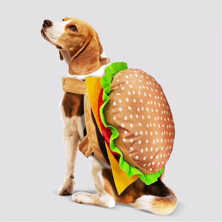 Disfraz de Halloween de hamburguesa para perro