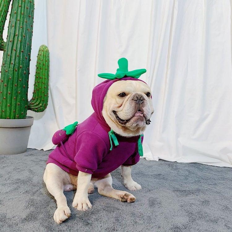 Disfraz de berenjena para perro