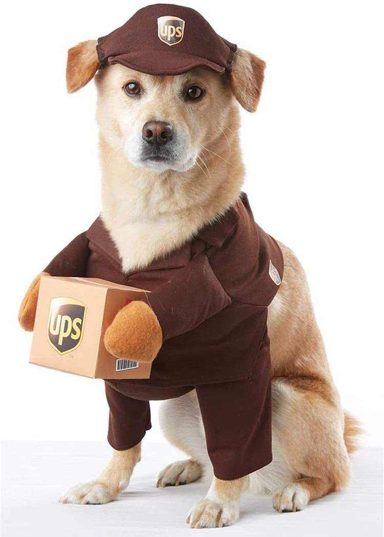 Disfraz de repartidor de UPS para mascotas