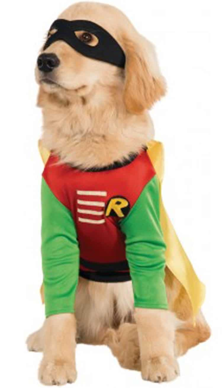 Robin Superhero Dog Halloween Costume
