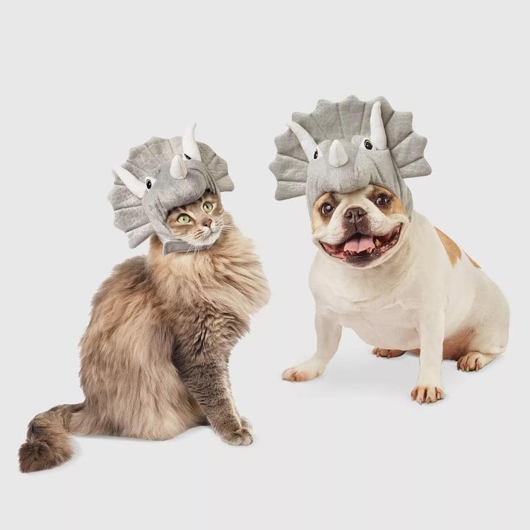 Disfraz de Halloween de tricératops para mascotas