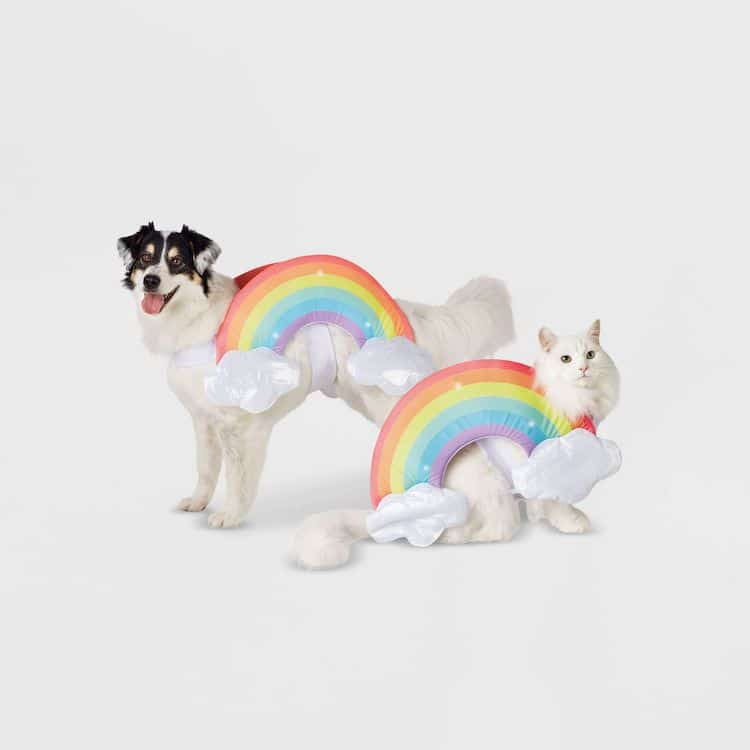 Disfraz de arcoíris para mascota