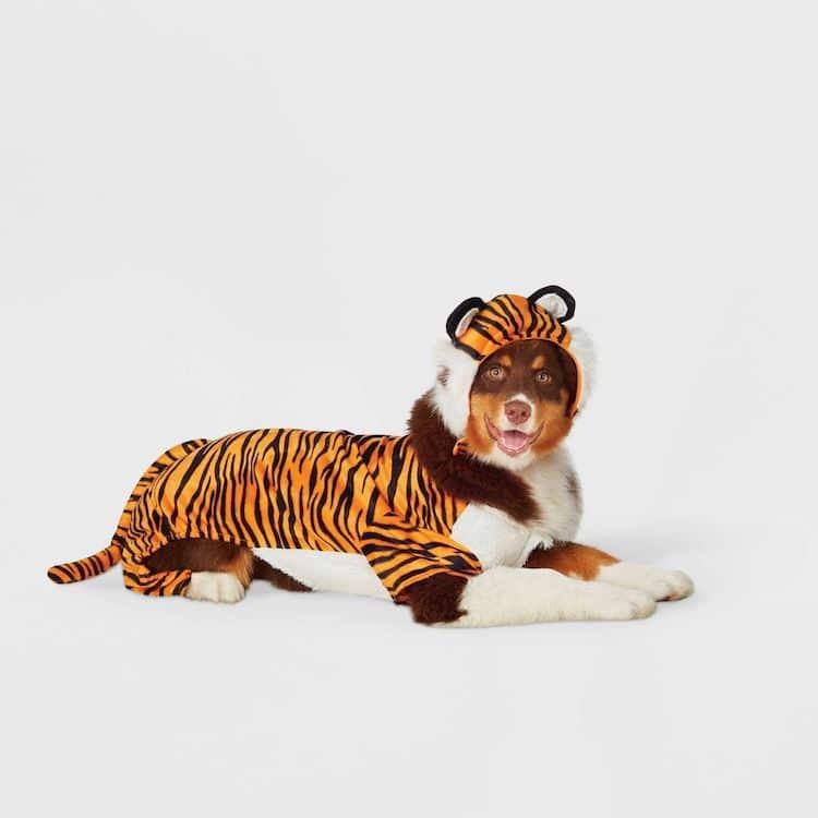 Disfraz de tigre para perro