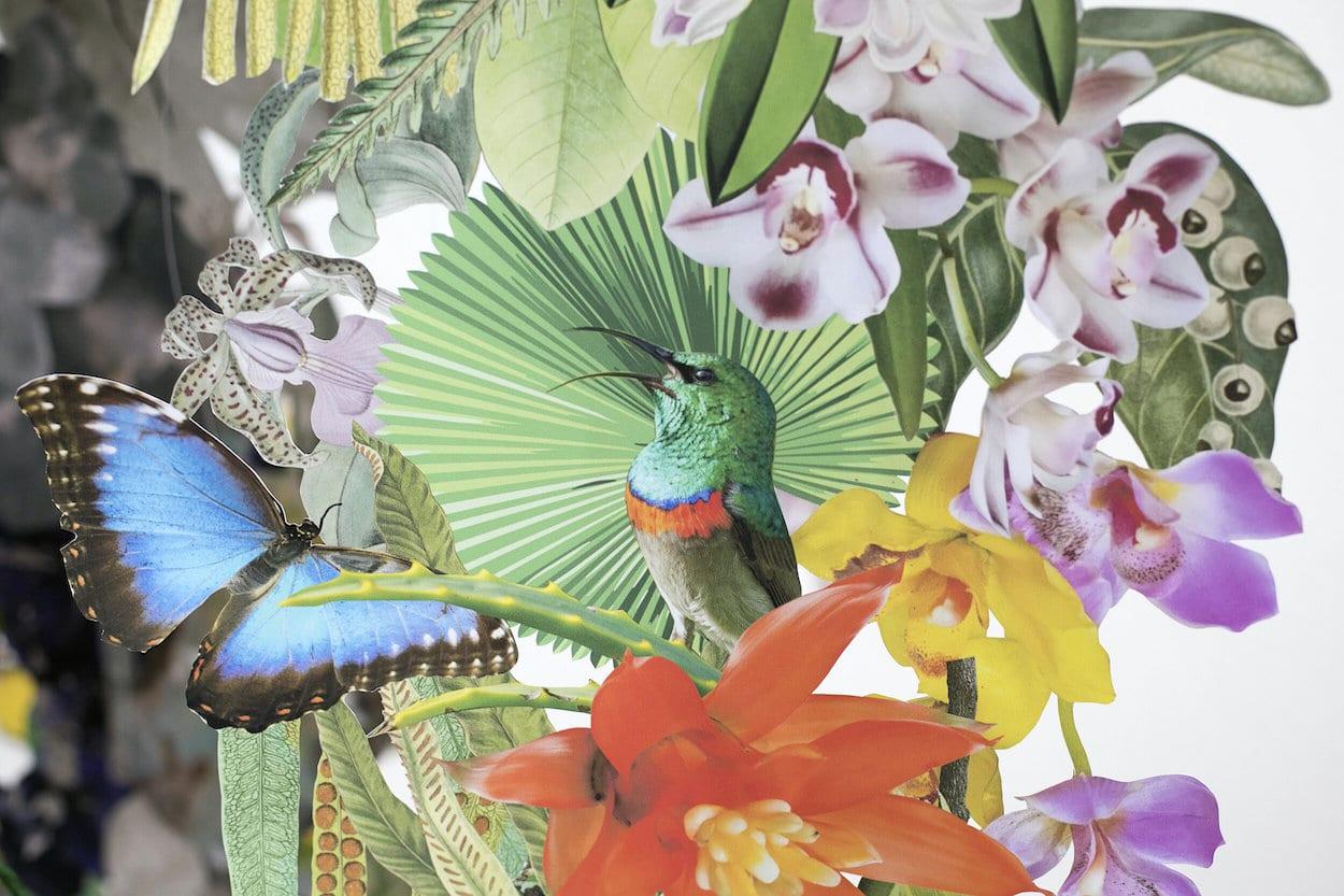Biodiversity Installation Collage Art