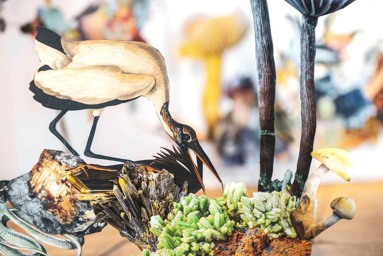 Collage Installation Art Displaying Wildlife