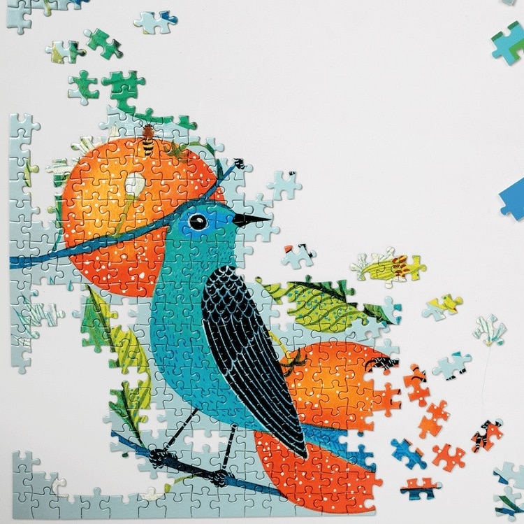 Birds and Oranges Puzzle