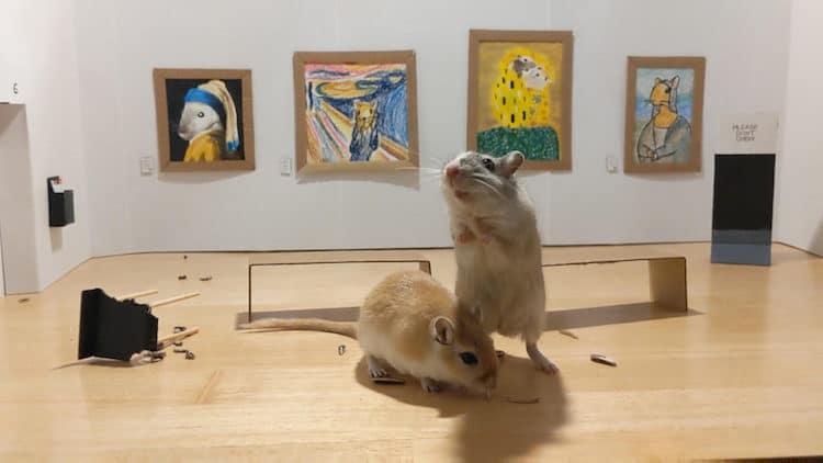 Gerbil Art Museum by Filippo Lorenzin and Marianna Benetti