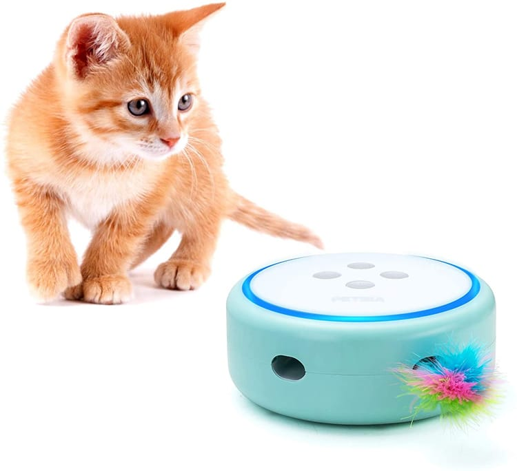 Electronic Feather Pop and Play Cat Toy