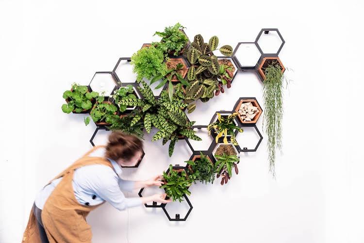 Woman Tending Modular Living Wall