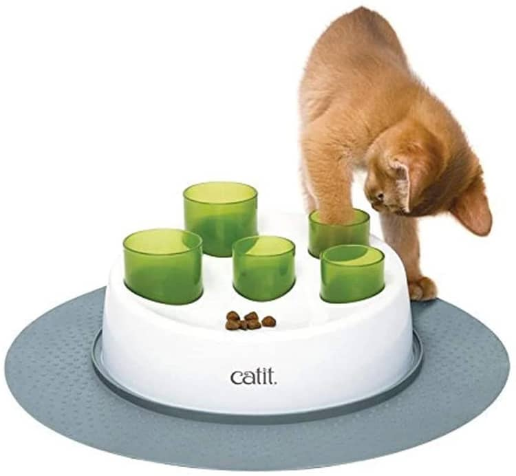 Interactive Cat Digger