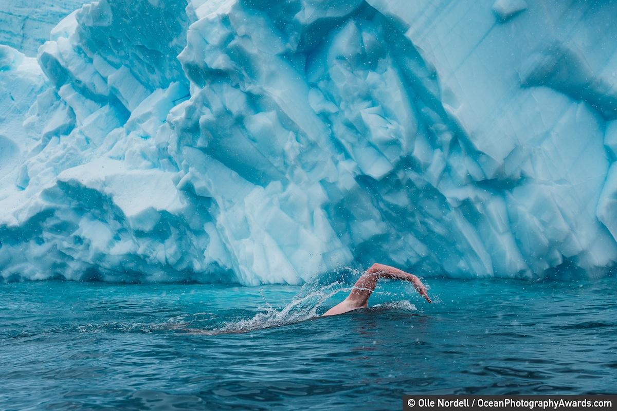 Lewis Pugh swimming off Antarctica