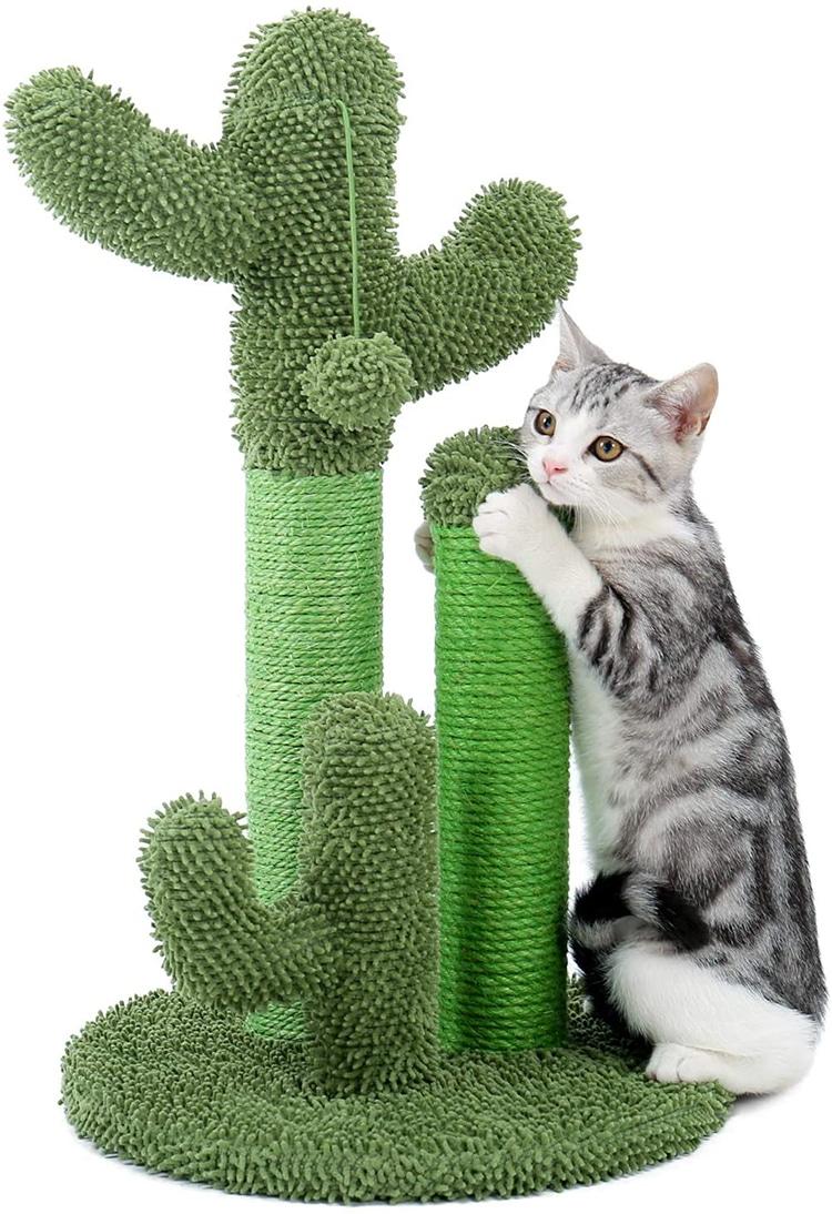 Cactus Cat Scratcher