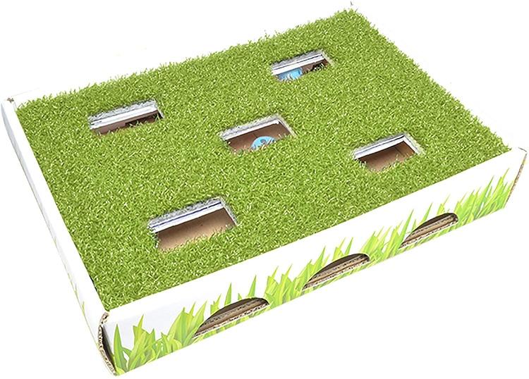 Grass Hunting Box Cat Toy