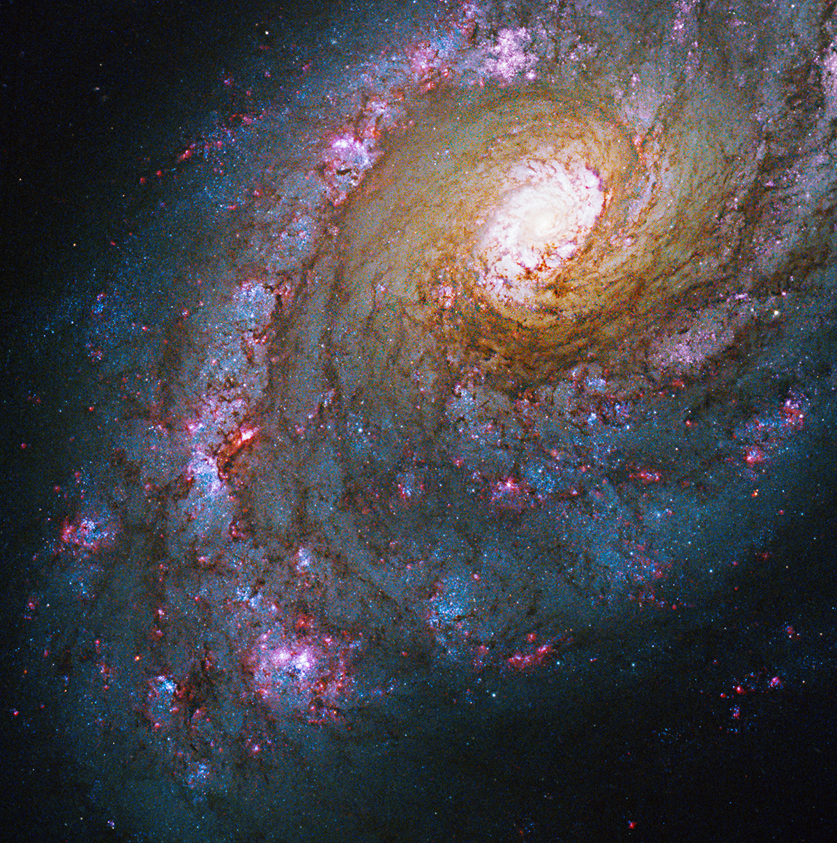 Caldwell Catalog 45 NASA Hubble Telescope Images