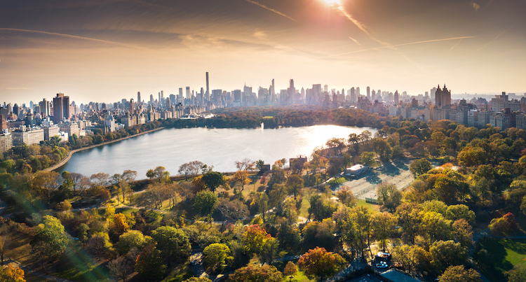 The History and Legacy of NYC's Central Park