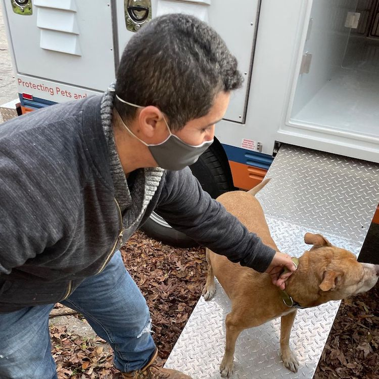 Man with Mask and Dog at New Animal Shelter