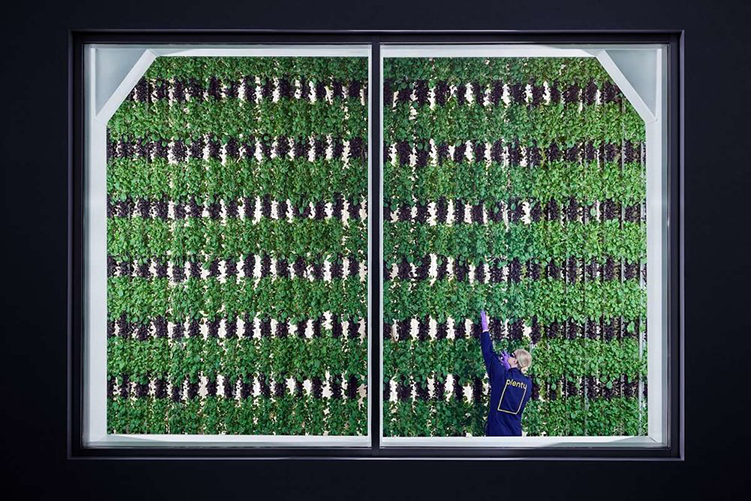 This 2-Acre Vertical Farm is Managed by AI and Robots