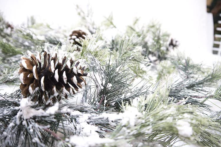 Garland - 20+ Awesome Items to Complete Your Rustic Christmas Aesthetic