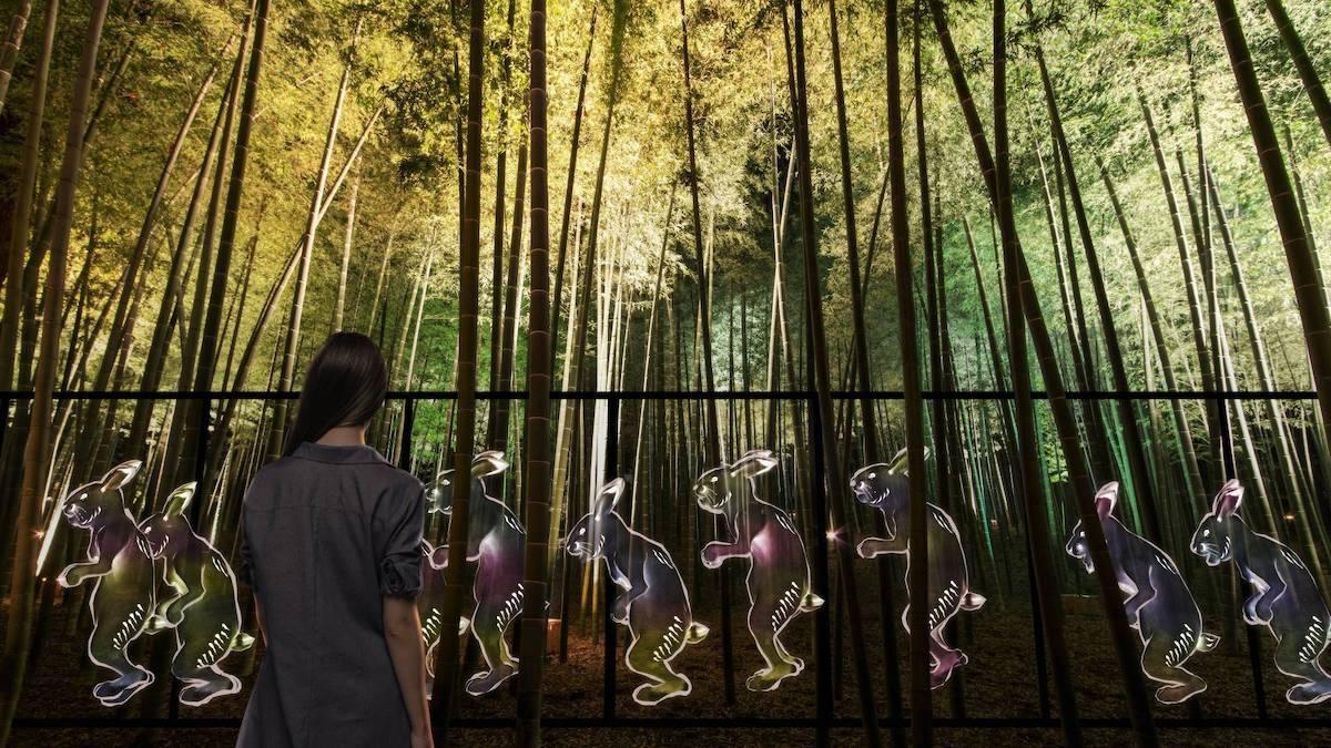 teamLab's Kairakuen Garden Installation Transforms Nature Into Art
