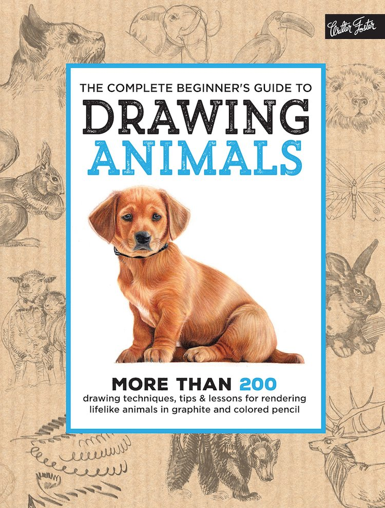 Beginners Guide to Drawing Animals