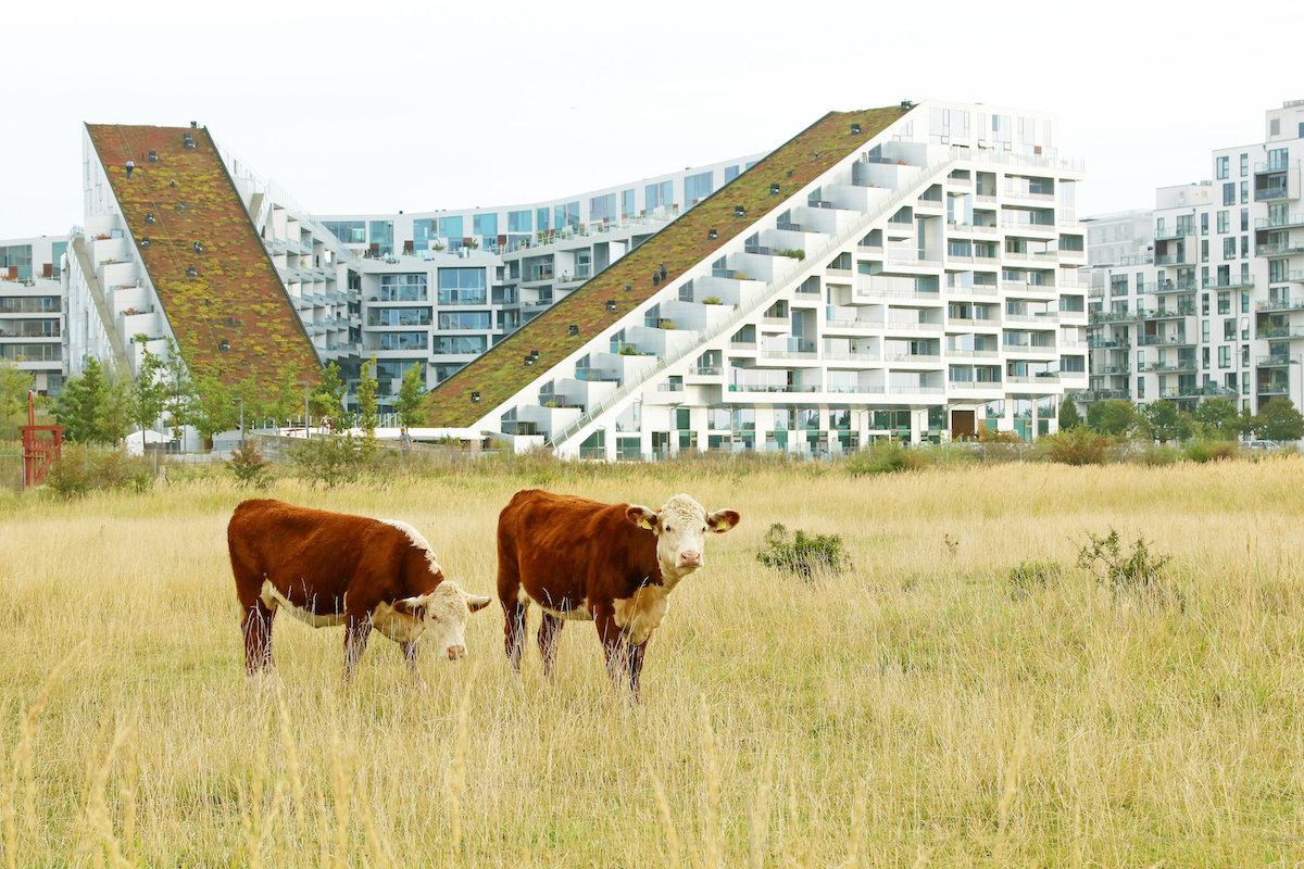 8 House - The Architecture of BIG - 15 Great Buildings by Bjarke Ingels Group