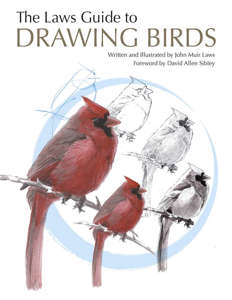 How to Draw Birds Book