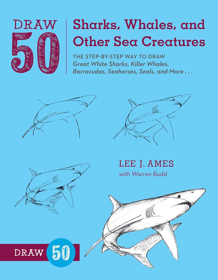 How to Draw Sea Creatures Book