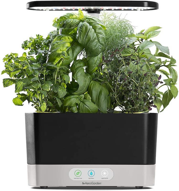 Tabletop Indoor Garden