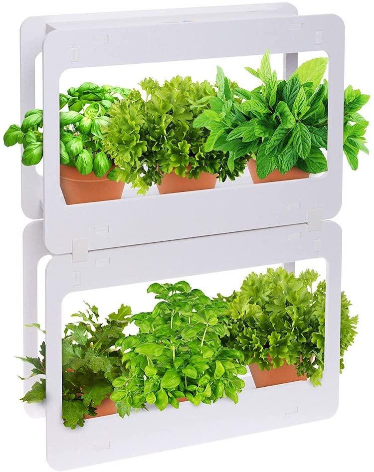 Multi-Tiered Indoor Garden