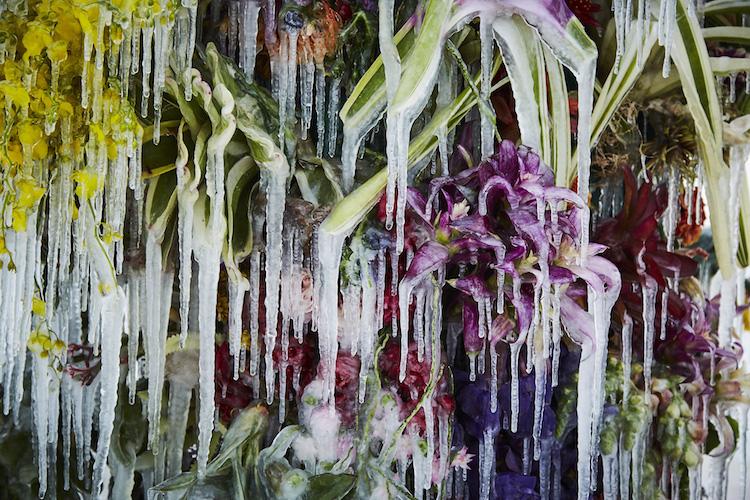Frozen Flowers Installation by Makoto Azuma